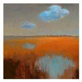 Reflecting Clouds Art Print