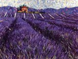 Lavender Fields I Art Print
