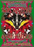 Bob Marley & Stevie Wonder Art Print