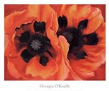 Oriental Poppies, 1928 Art Print