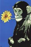 Monkey Flower Art Print
