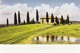 Tuscan Hillside Art Print