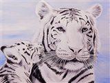 White Tiger and Cub Art Print