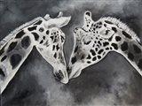 Kissing Giraffe Art Print