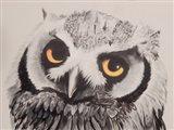 Give a Flying Hoot Art Print