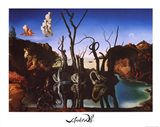 Swans Reflecting Elephants, c.1937 Art Print