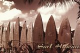 Surf Hawaii Art Print
