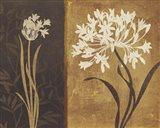 Yin Yang I Art Print