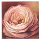 Rose Portrait Art Print