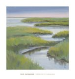 Winding Everglade Art Print