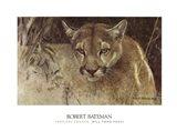 Tropical Cougar Art Print