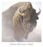 Chief (detail) Art Print