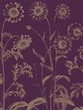 Chrysanthemum 13 Art Print