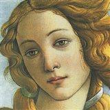 The Birth of Venus (detail) Art Print