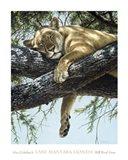 Lake Manyara Lioness Art Print
