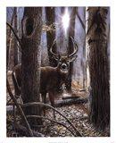 Woodland Sentry Art Print