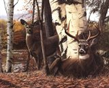 Autumnos Majesty Art Print