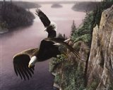 Wings Over the St. Croix Art Print