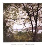 Lakeside Trees I Art Print