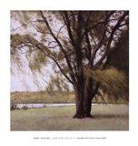 Lakeside Trees II Art Print