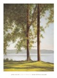 Sunlit Trees II Art Print