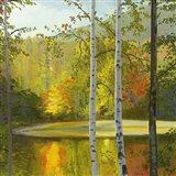 Cooper Lake, Autumn Art Print