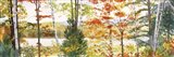 Autumn Lake III Art Print