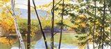 Autumn Lake IV Art Print
