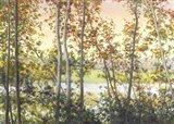 Autumn Shady Art Print