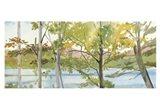 Lake Study (right) Art Print