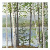 Cooper Lake I Art Print
