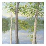 Cooper Lake II Art Print