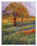 Colors of Brenham (left) Art Print
