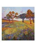 Colors of Brenham (center) Art Print