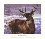 Through My Window- Whitetail Deer Art Print
