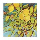 The Lemons Above Art Print