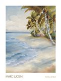 Tropical Retreat Art Print