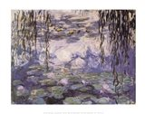 Water Lilies and Willow Branches, c.1917 Art Print