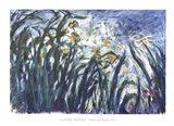 Yellow and Purple Irises, 1924-25 Art Print