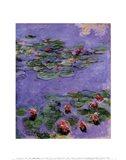 Water Lilies, c. 1914-1917 Art Print