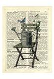 Gardener's Chair Art Print