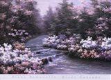 River Cascade Art Print