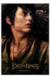 Lord of the Rings: Return of the King Frodo Art Print