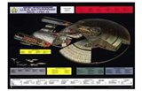 Star Trek: The Next Generation - NCC-1701-D cutaway Art Print