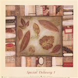 Special Delivery 1 Art Print