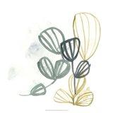 Abstract Sea Fan III Art Print