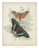 Butterflies & Ferns I Art Print