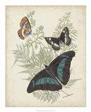 Butterflies & Ferns II Art Print