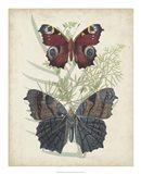 Butterflies & Ferns III Art Print