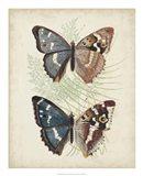 Butterflies & Ferns IV Art Print
